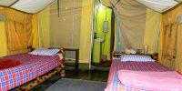 N-2,-Eco-tent,-Interior