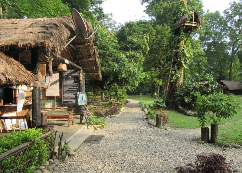 Image result for Nameri Eco Camp, Assam: